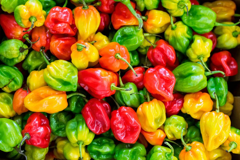 25 Of The Most AMAZING Habanero Chile Recipes